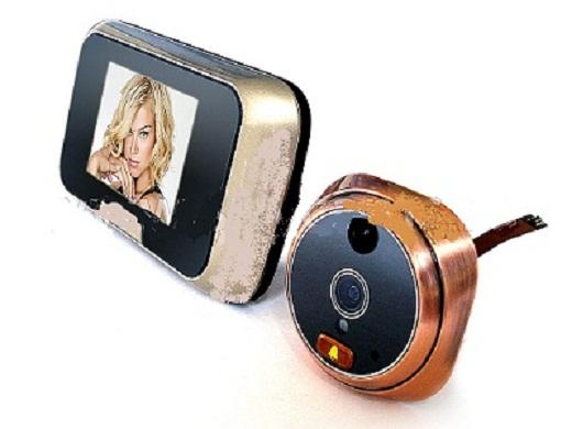 На фото пример видеоглазка с датчиком движения