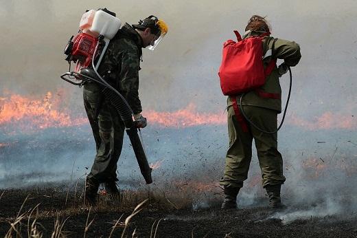 Ранцевые огнетушители на снимке