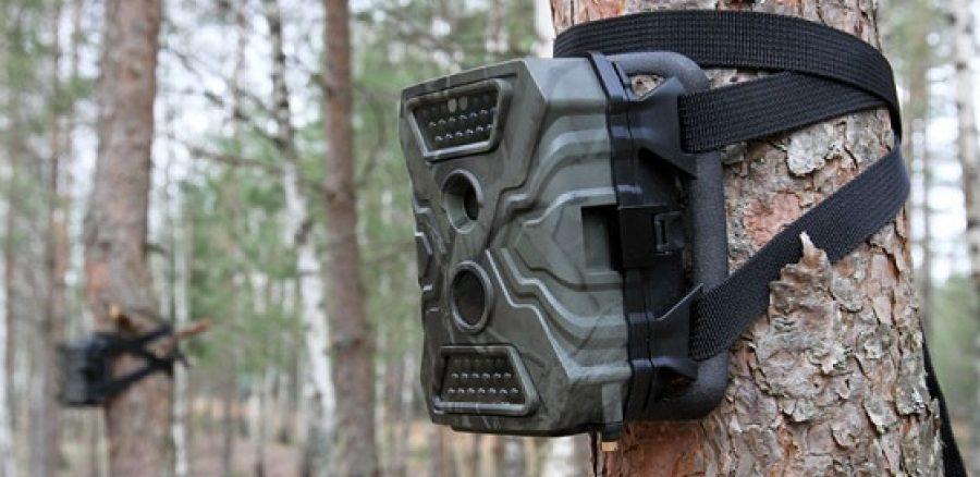 фотоловушка для охраны